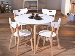 Jídelní stůl PEPPITA barevné provedení bílá