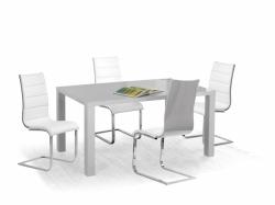 Jídelní stůl RONALD rozměr: 160 x 90 cm